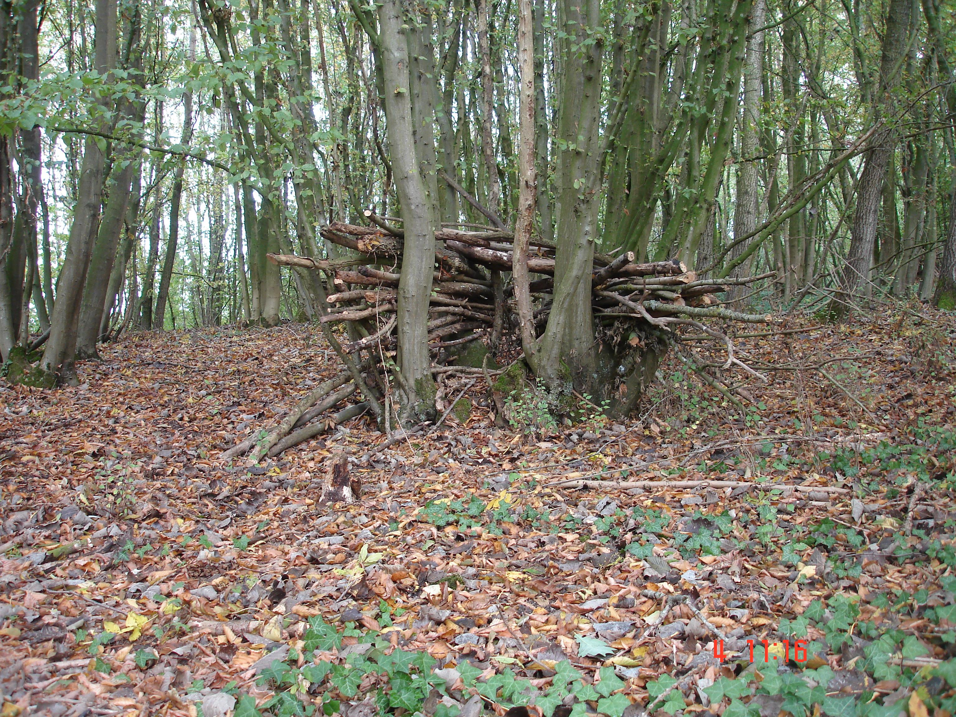 aménagement bois